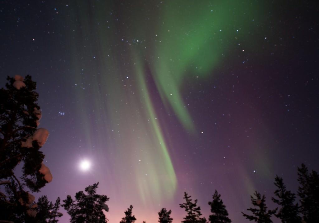 lola_akinmade_åkerström-northern_lights-2605