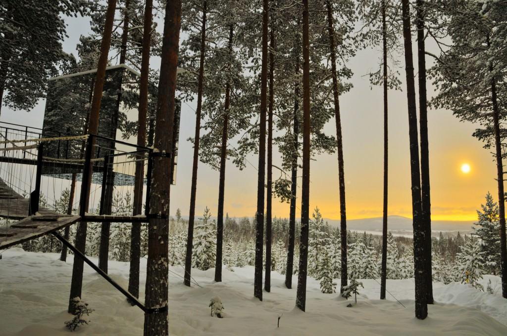 lola_akinmade_åkerström-tree_hotel-2609